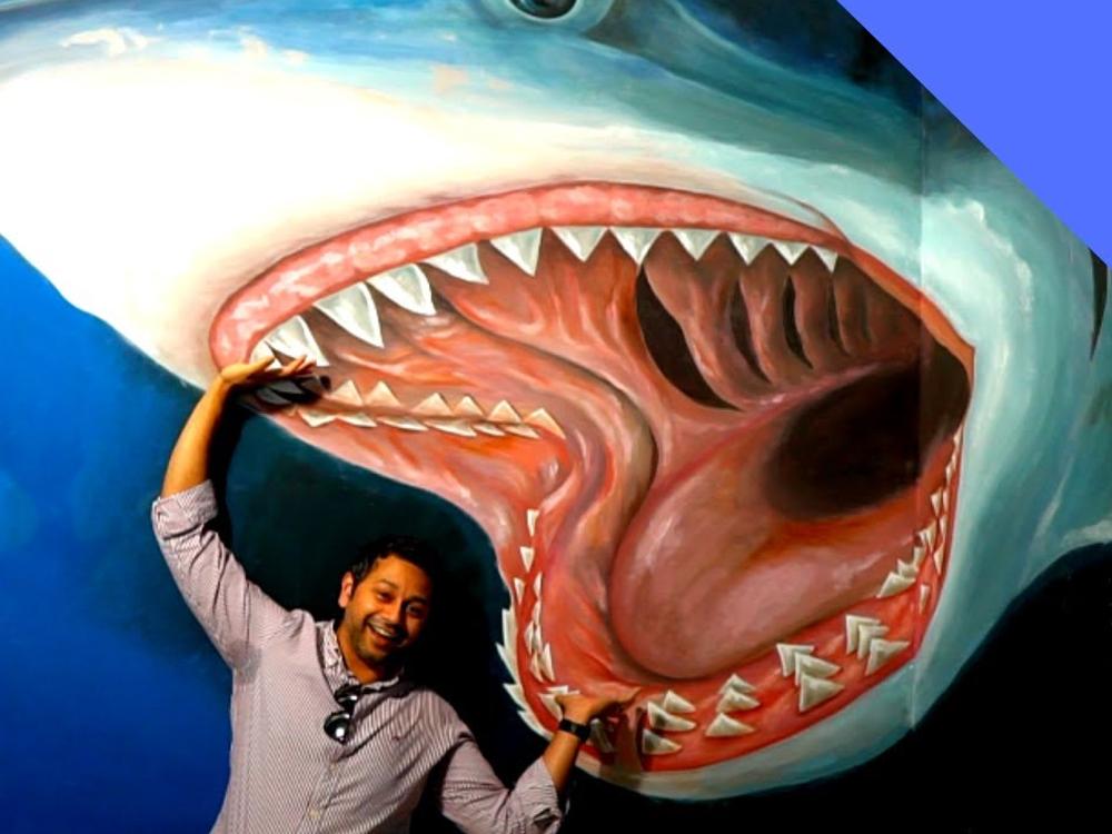 shark dubai 3d