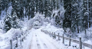 Pakistan Looks Staggering After New Snowfall