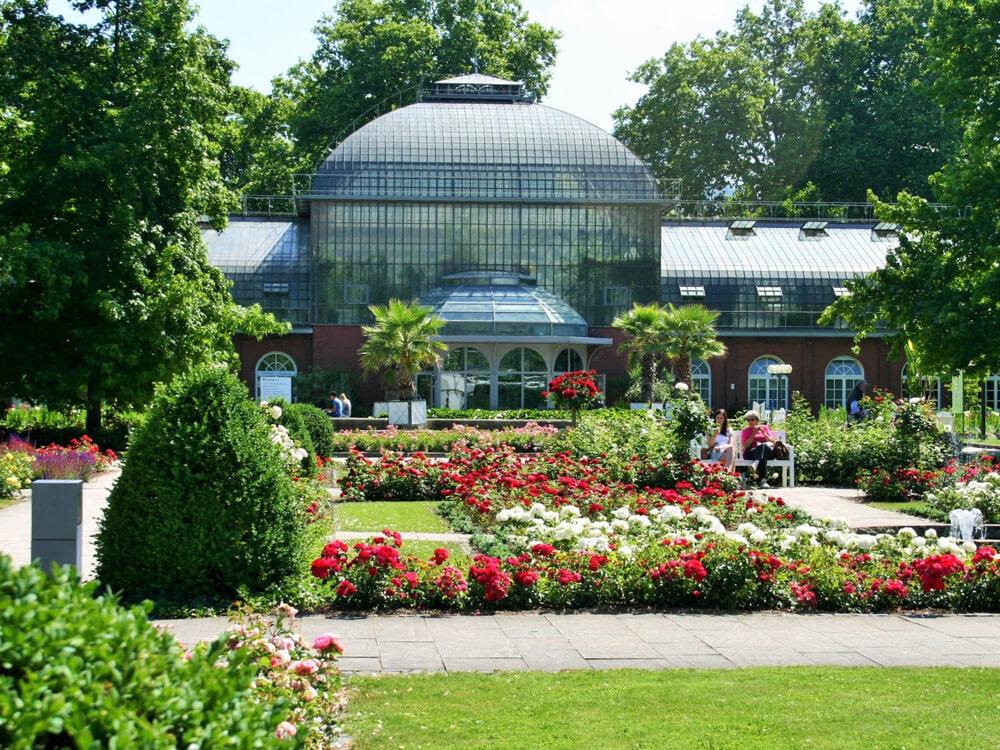 The Palm Garden frankfurt