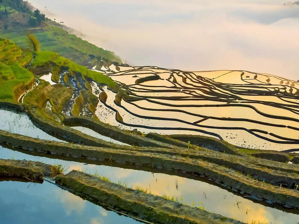 Honghe Hani rice terraces, China