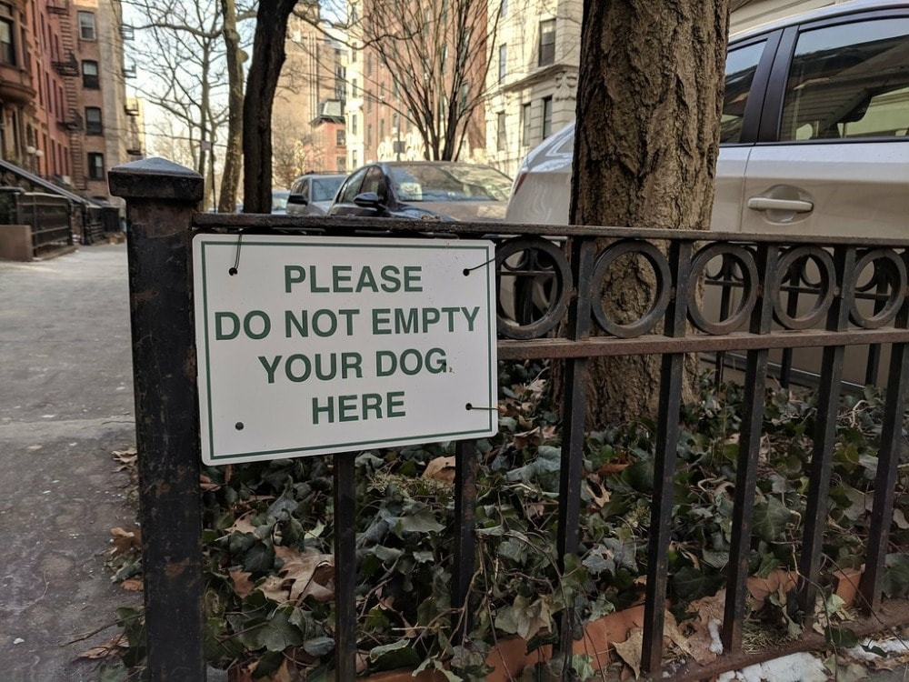 Please do not empty your dog here-min